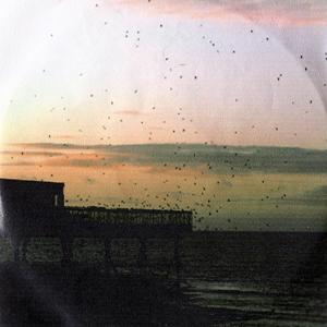 schh-albumcover